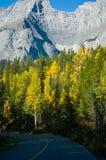 Route par des montagnes dans l'automne photographie stock libre de droits