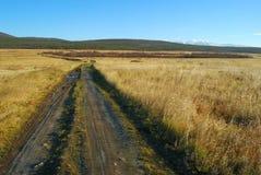 Route par des prés Image stock