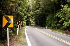 Route par la clairière A Image libre de droits
