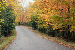 Route par la forêt d'automne. Photographie stock libre de droits
