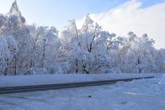 Route par la forêt neigeuse d'hiver image libre de droits
