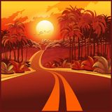 Route par la jungle au coucher du soleil Images libres de droits
