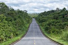 Route par la région d'Amazone de l'Equateur Image stock