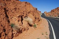 Route par le parc Images libres de droits