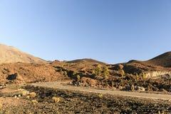 Route par le parc national de Teide, Ténérife, Îles Canaries, Espagne Photos stock