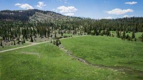 Route par le pré de montagne au Wyoming Images stock