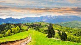 Route par le pré sur le flanc de coteau au lever de soleil photographie stock libre de droits