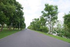 Route par les bois Images stock