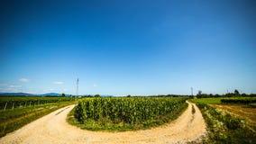 Route par les champs photo libre de droits