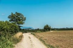 Route par les champs images stock