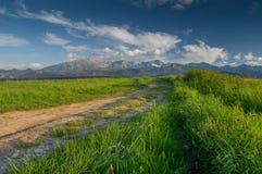 Route par les champs verts avec de hautes montagnes sur le fond photo libre de droits
