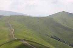 Route par les pâturages de montagne Photos libres de droits