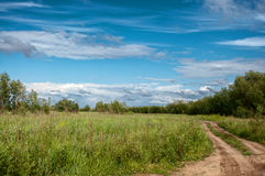 Route par un champ avec l'herbe verte Photos stock