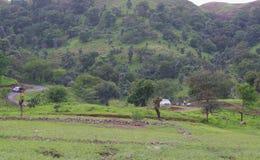 Route parallèle des collines vertes images libres de droits