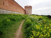 Route parmi les fleurs jaunes à la vieille forteresse Photo stock