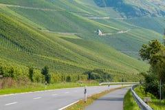 Route parmi les vignobles Image stock