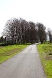 Route pastorale de campagne Photographie stock