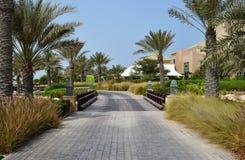 Route pavée avec des palmiers, station de vacances d'hôtel d'Anantara, Sir Baniyas Island Images stock