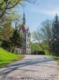 Route pavée avec des pavés menant au château Image stock