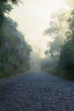 Route pavée en cailloutis brumeuse Images stock