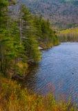 Route perdue d'étang de castor, rivière, Woodstock NH 03262 Images stock