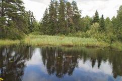 Route perdue d'étang de castor, rivière, Woodstock NH 03262 Photos stock