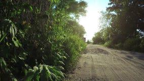 Route près d'été de barrière clips vidéos