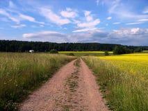 Route, pré, le ciel et nuages Images stock