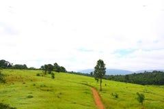 Route, pré, Thaïlande Images libres de droits