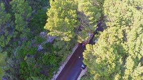 Route reblanchissant sur l'île Mljet, aérien Images stock