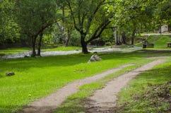 Route, rivière et arbres Photo libre de droits