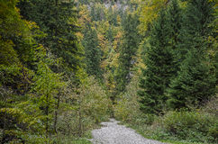 Route rocheuse de enroulement dans les montagnes Photo stock