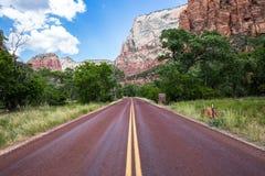 Route rouge typique en Zion National Park, Utah, Etats-Unis Image libre de droits