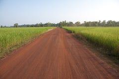 Route rurale. Photo stock