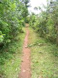 Route rurale Photo libre de droits
