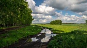 Route rurale au printemps Photo stock