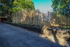 Route rurale avec la barrière en bambou photo stock