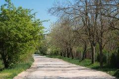 Route rurale de long enroulement Image libre de droits