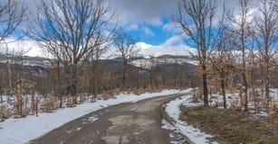 Route rurale froide Photo libre de droits