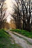 Route rurale, la poussière Image stock