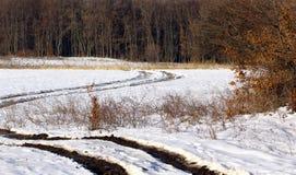 Route rurale près de la forêt images stock
