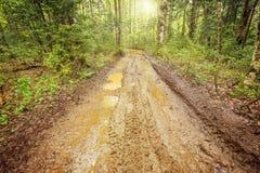 Route sale dans la forêt Images stock