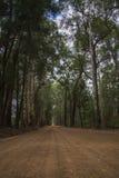 Route scénique d'entrée à Warren National Park Photo libre de droits