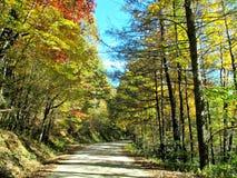 Route scénique dans les montagnes photos libres de droits
