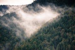 Route scénique en montagnes Image libre de droits