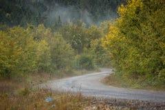 Route scénique en montagnes Images stock