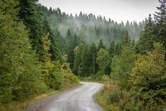 Route scénique en montagnes Image stock