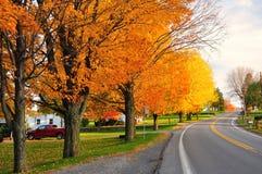 Route scénique dans l'automne Photographie stock