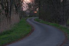 Route sinueuse dans une forêt Photo stock
