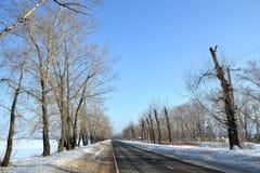 Route sur la péninsule Kopylovo Image stock